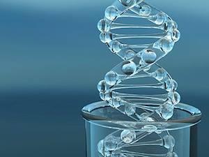 1e4b2966a925 Tumormarkereknek nevezzük azokat az anyagokat, amelyek a daganatos beteg  testnedveiben emelkedett mennyiségben vannak jelen, míg a nem daganatos  egyének ...